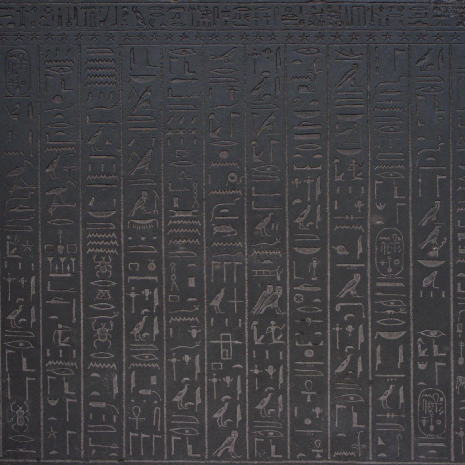 Koopman Wallpaper 1600x1600